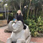 Taronga Zoo Corporate Event